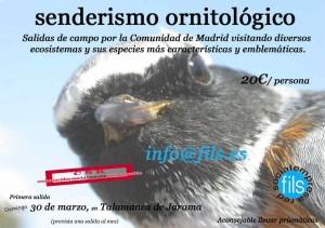 Senderismo ornitologico
