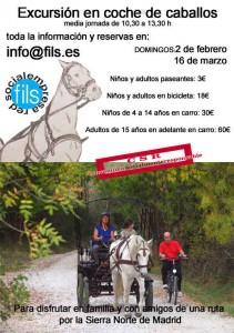 caballos media jornada