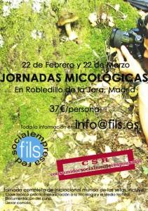 jornadas micologicas
